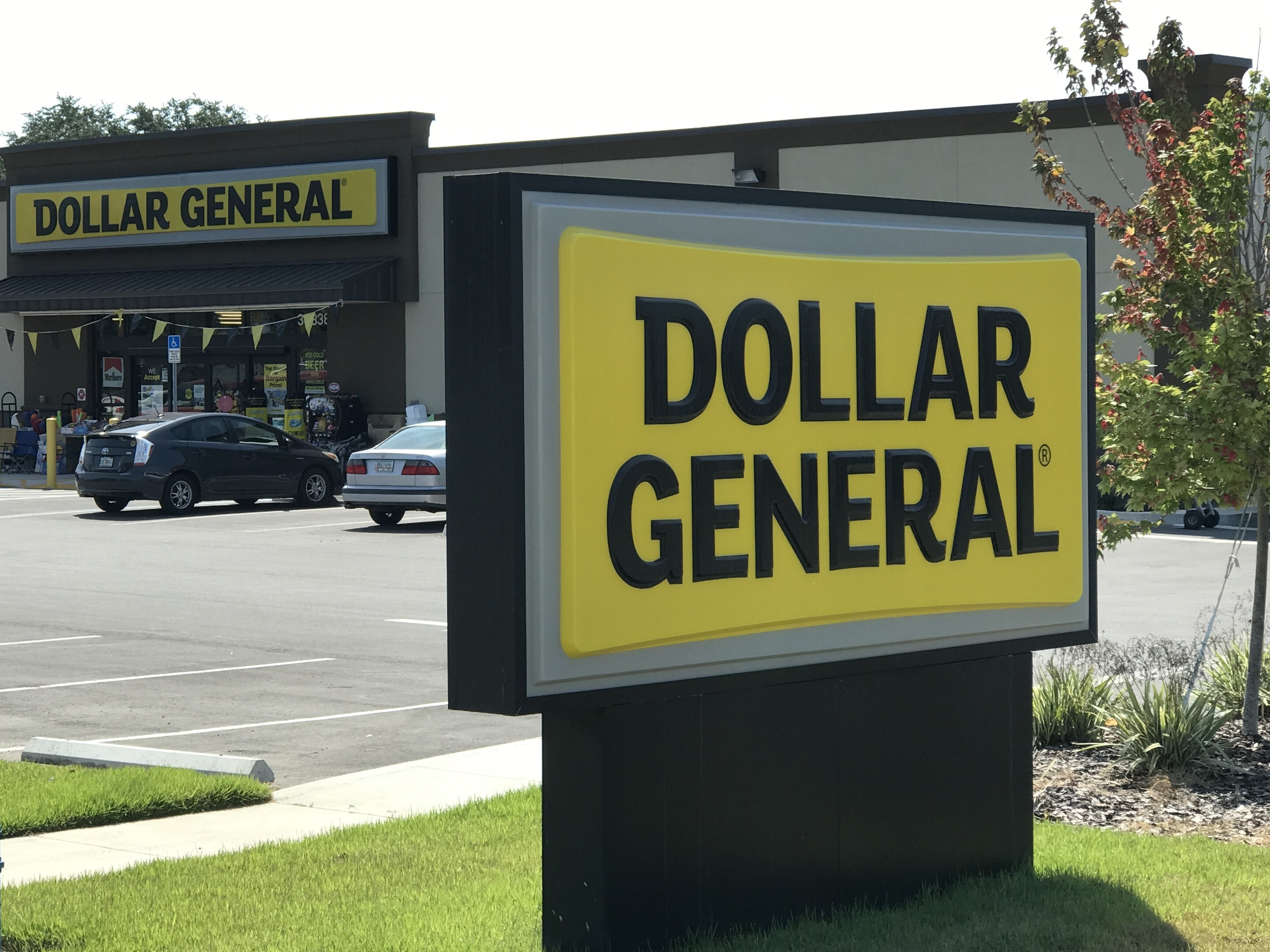 Dollar General Sees Gain, Loss From Weather in Q3