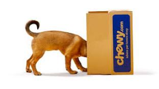 Chewy Expands its Online Pet Pharmacy Compounding Medications
